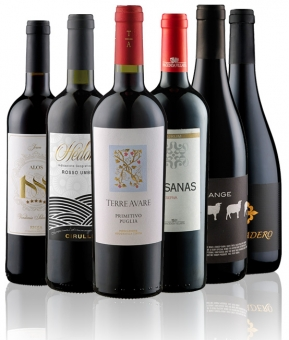 Weinpaket Rotwein Gold prämiert (6 x 2 Flaschen)